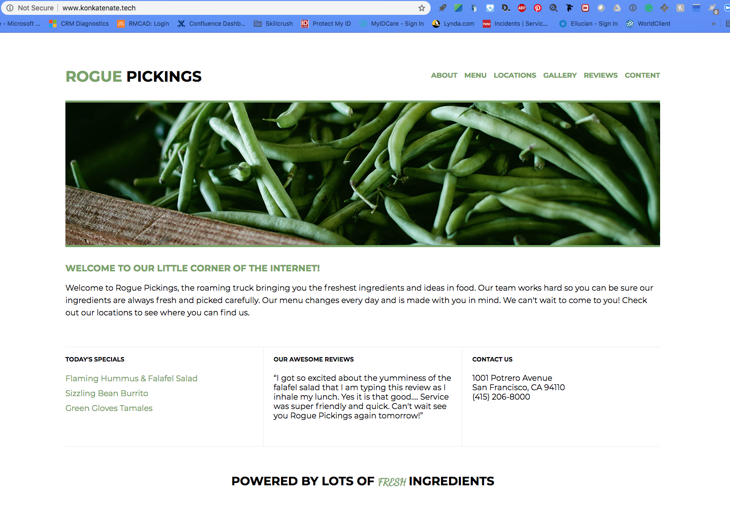 Rogue Pickings image web mockup for fresh food delivery service.